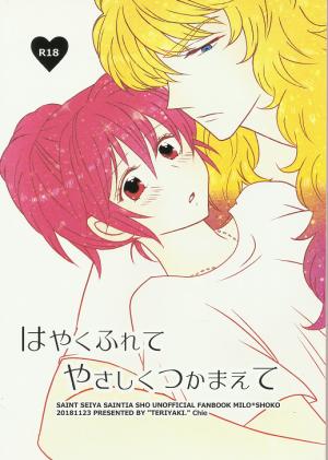 Sho fanzine3